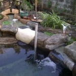 kolam trickle filter 1