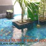 Trickle filter kolam koi Kecil-Pepeng