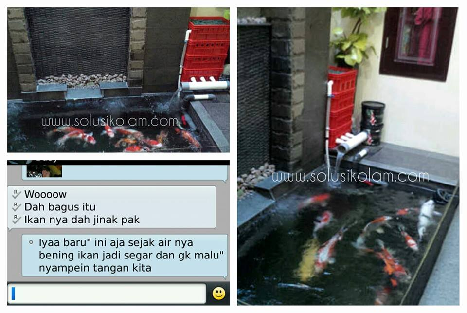 Filter kolam koi trickle filter serang